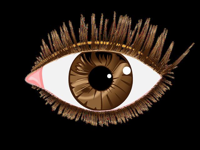 hnědé oko ilustrace