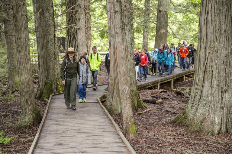 školní výlet do lesa